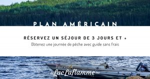 Promotion plan américain